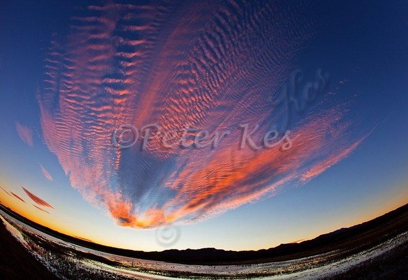 sunset-fisheye_bosque_20101125_img_7940