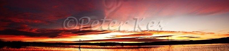 sunset-pano-stitch_bosque_20101125_img_7287