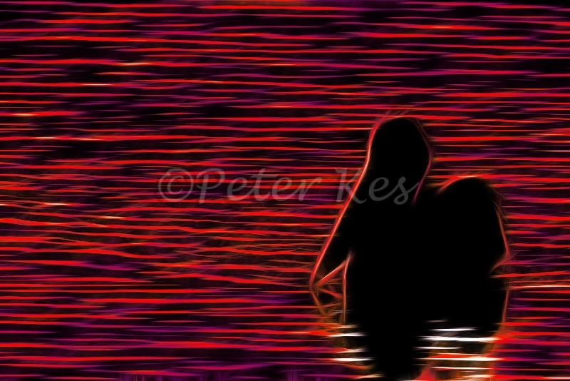 neon-dalmatian-pelican-morning-silhouette_lakekerkini_20110304_a23d3403-copy