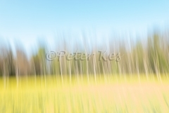 Blur_Oberwil_20200410_DSC01036